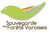 logo-asdfv