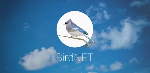 0821-application-du-mois-birdnet